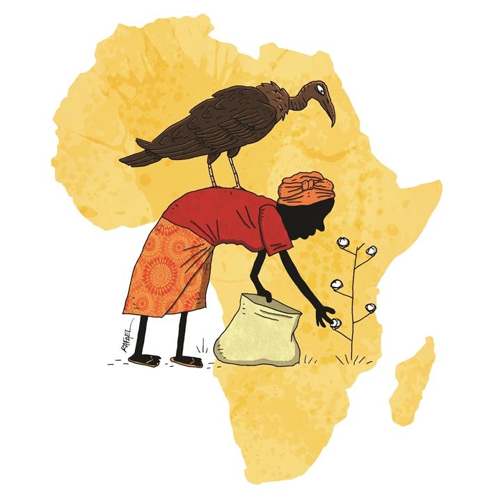 25-transgenicos-africa